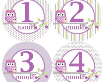 Baby Monthly Milestone Growth Stickers in Lavender Green Grey Owls MS302 Nursery Theme Baby Shower Gift Baby Photo Prop