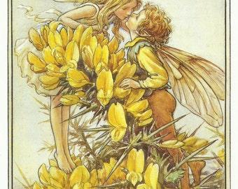 Gorse Fairy Cicely Mary Barker Flower Fairies Vintage Print 1995 Wall Art Nursery Decor Fairy Print Home Decor Print Fine Art