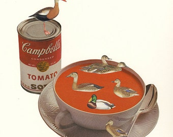 Duck Soup.  Collage by Vivienne Strauss.
