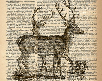 Dictionary Art Print - Deer / Reindeer -  Upcycled Vintage Dictionary Page Poster Print - Size 8x10