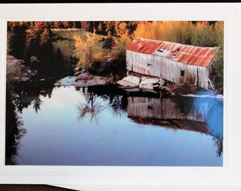 PHOTO GREETING CARD, nature photography, blank card, photo note card, birthday card, special occasion note card, for her as for him