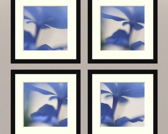 """Abstract photography set, nature print collection, flower, blue, -- """"Blue Dreams"""", a 5x5-inch fine art photo set"""