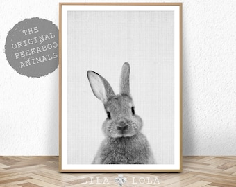 Woodland Nursery Wall Art Decor, Bunny Rabbit Poster, Printable Instant Digital Download, Black and White Baby Forest Animal