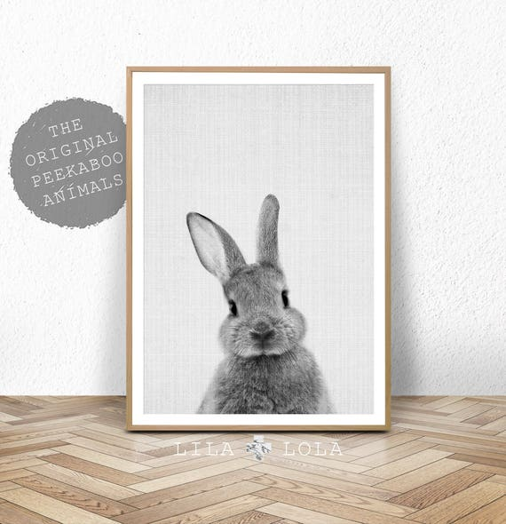 Rabbit Print Baby Animal Prints Woodland Nursery Decor