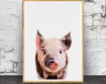 Pig Print, Baby Animal Prints, Baby Decor, Baby Wall Art, Pig Wall Art, Baby Room Decor, Animal Prints, Animal Art, Nursery Animal Print,