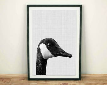 Canadian Goose, Canada Goose Print, Bird Wall Print, Goose Wall Art, Goose Printable Poster, Digital Download, Black and White, Digital Art