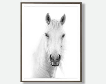 Horse Printable, Downloadable Horse, Horse Wall Art, Instant Horse Download, Horse Lover Art, Digital Horse, Horse  Art, Horse Photo