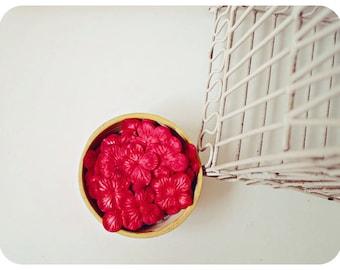 30 Hydrangea petals Red  / pack