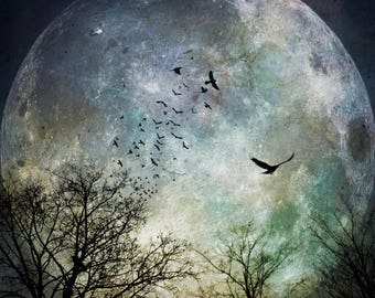 full super moon photo, surreal landscape photograph tree birds home decor, night sky blue green astrology intuitive spiritual art supermoon