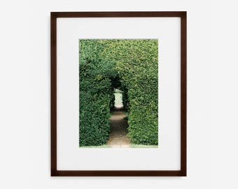 Garden Door, Fine Art Photograph, Home Decor