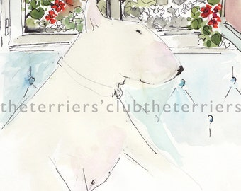 Dufy the Dog at the Window Bull Terrier Card