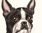 Boston Terrier - Dog Breed Print! Dog Lover Gift Gallery Puppy Animal Lover Pet Art Kennel Memorial Poster