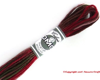 DMC 4518 Coloris Variegated 6 Strand Floss Cottage