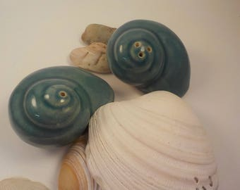 Seashell Salt and Pepper Shakers FREE SHIPPING!