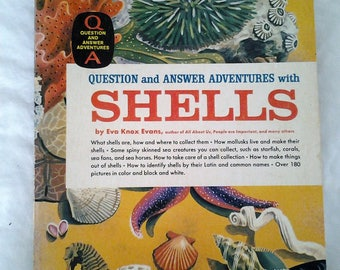 Childrens 1960s Shell Paperback Golden Adventure Book by Eva Knox Evens