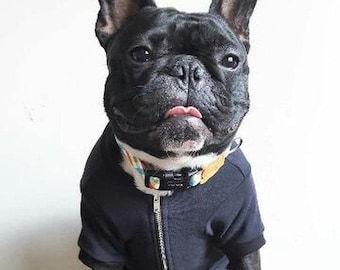 Zippy Jacket - Navy + Black (clothes for french bulldog, french bulldog clothing, frenchie clothing, french bulldog jacket)