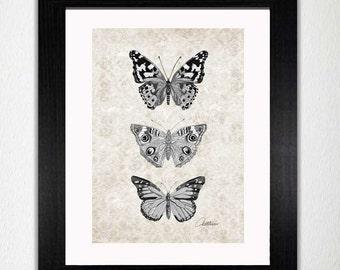 Monochrome Schmetterling drucken Monochrom Schmetterlinge Artwork Schmetterling Wand Kunst Schmetterling Dekor Schmetterling Abbildung Schmetterlinge zu frame