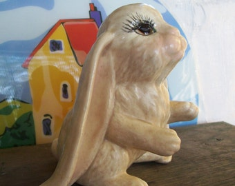 English lop eared rabbit, rabbit with long ears, English lop