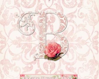 Vintage Roses & Pearls Pink Damask Alpha Set Transparent Instant Download PSD PNG Digital