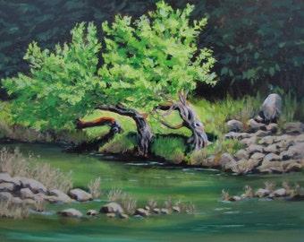 Old Friends - Original Landscape Painting
