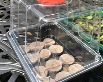 Small Seed Starting Garden Kit - Mini windowsill Greenhouse - grow indoors propagator - Start 12 plants