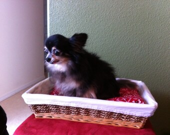Small pet inner lined wicker basket with red bandanna print pillow