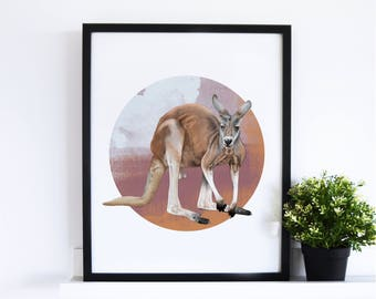 The Red Kangaroo // Abstract Collection