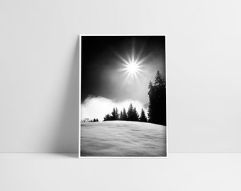 Winter Black White Pine Tree Forest Snow Photography Winter Sun Photo Downloadable Winter Printable Mountain Nordic Home Decor Snow Wall Art