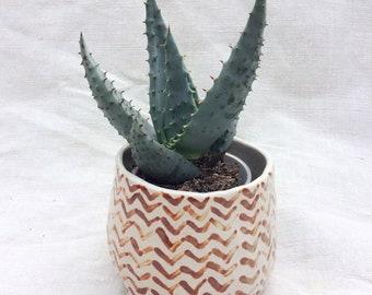 Ceramic Planter - Arrow Pattern - Handformed - Mini Planter - Succulent or Cactus Planter - Handmade Pottery - Ready To Ship