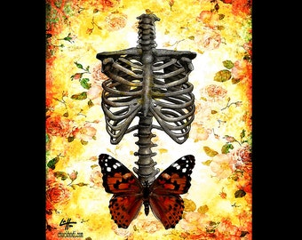 """Print 8x10"""" - Untitled - Skull Skeleton Butterfly Dark Art Lowbrow Art Wings Surreal Fantasy Gothic Pop Art Bones Taxidermy Rose Insect"""