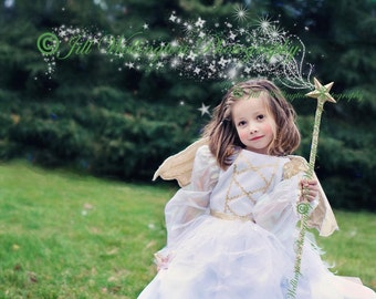 DIGITAL Glitter trail, star trail, sparkle trail with magic wand for photographers, photography