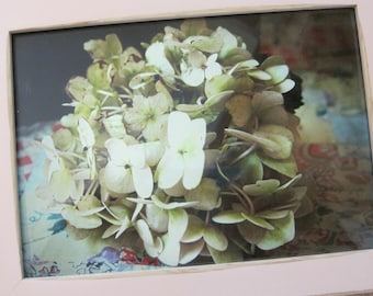 Framed Original Photograph of a Hydrangea in a Distressed Pink Frame