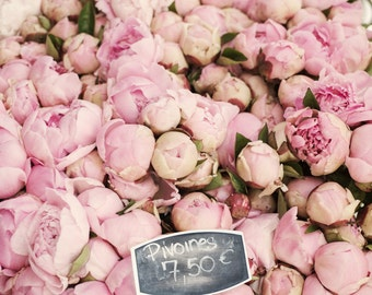 Paris Peony Photograph -  Pink Peonies at the Market, Large Wall Art, Floral French Home Decor