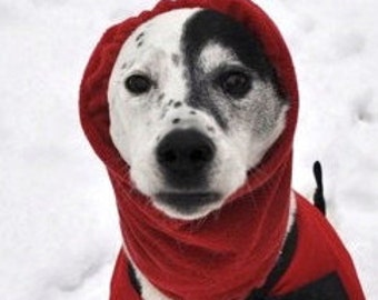 Red Polar Fleece Snood for Small to Medium Dog