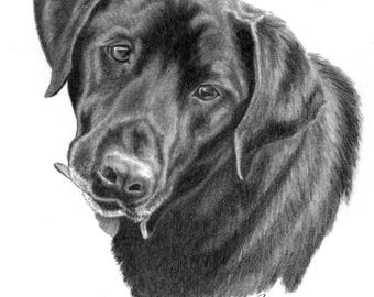 Pet Portrait Custom Portrait Custom Pet Portrait Dog Lover Gifts for Him Her