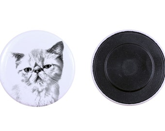 Magnet with a cat - Exotic Shorthair