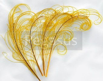 GOLDEN YELLOW peacock feather sprigs (5 -8 Inches)(4 or 12 SPRIGS) curled feather plumes hats,fascinators,costume headdress,brooch bouquet