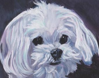 "Maltese dog portrait art Canvas PRINT of LAShepard painting 12x12"""