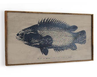 Anabas Fish Art Historical Print Wall Decor Framed Gift for Dad Wooden Fishing Gift For Men Nautical Lake House Decor Dad Gift
