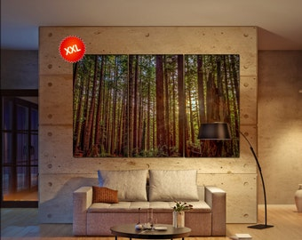 Redwood Forest  canvas Redwood Forest wall decoration Redwood Forest canvas art Redwood Forest large canvas  wall decor