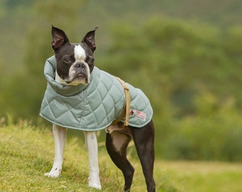 Quilted Terrier Dog Coat