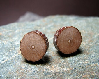 Cherry Rustic Twig Miniature Wooden Stud Earrings by Tanja Sova