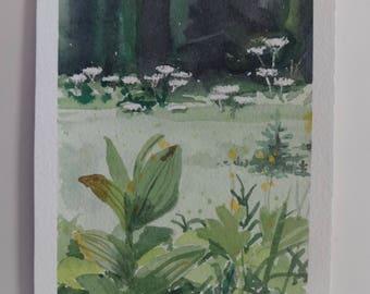 Glacier Park, Botanical, Watercolor
