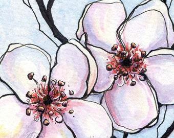 Blossoms - 6x6 Original Framed Watercolor - Cherry Blossoms