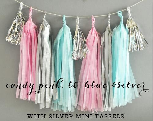 Pink Blue Silver Grey Tassel Garland Gender Reveal Decor