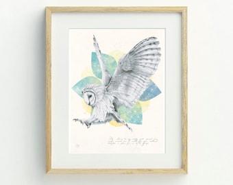 Barn Owl Art Print, A4, Original Artwork, Owl Illustration, Animal Art, Archival Print, Home Decor, Hand Drawn Owl Wall Art, Wildlife Art