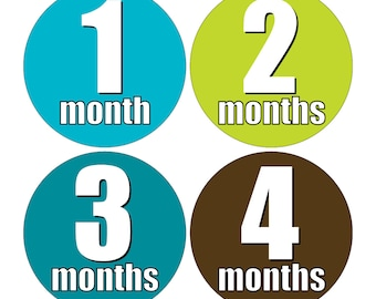 12 Monthly Baby Milestone Waterproof Glossy Stickers - Just Born - Newborn - Weekly stickers available - Design M017-08
