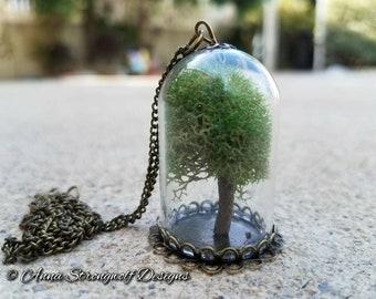 Tree of Life necklace moss terrarium