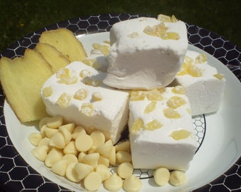 White Chocolate Ginger Marshmallows gourmet candy buffet dessert table s'mores campfire treat tropical luau
