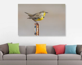 Western Meadowlark Songbird Fine Art Print, Bird Nature Wildlife Photography, Wallart Photo Printable, Home Office Decor, Bird Lover Gift